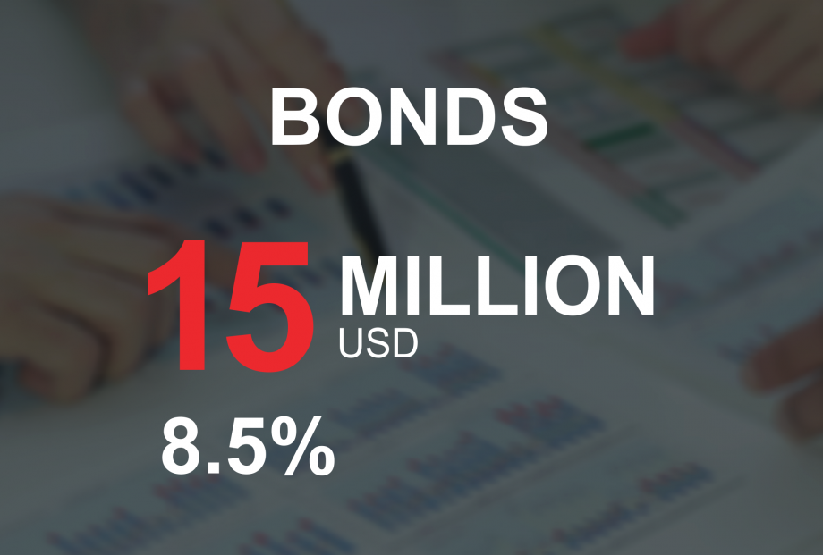 Announcement on public offering of USD bonds