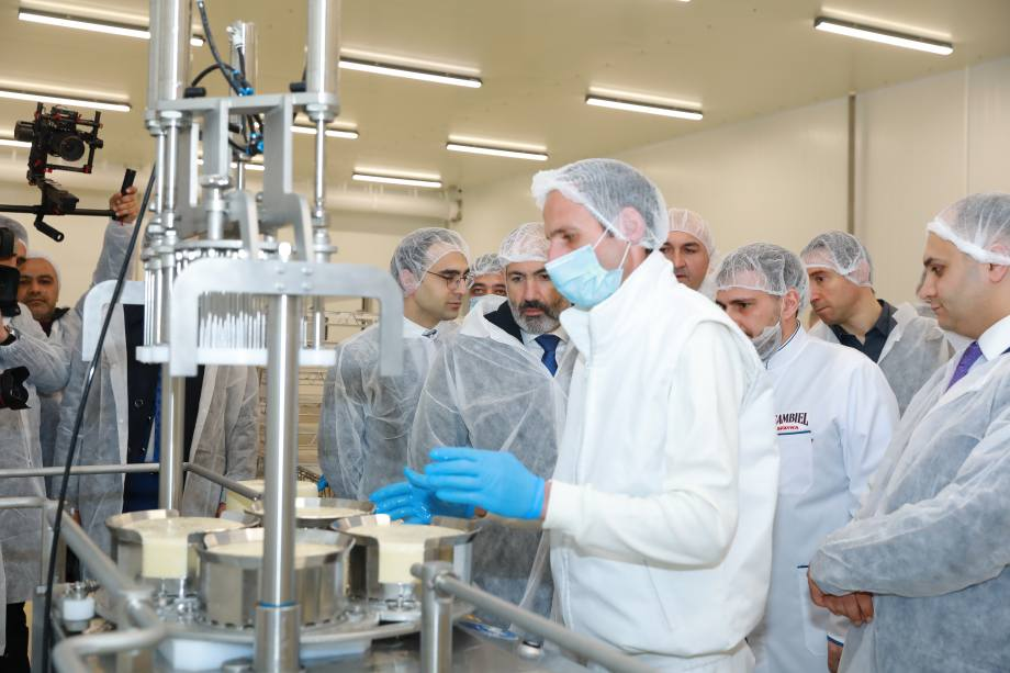 New cheese factory in Armenia